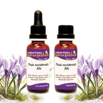 NEWTON Homeopathics Thuja occidentalis-newtonlabs net